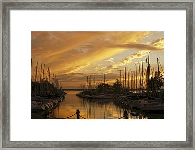 Golden Sunset With Sailboats Framed Print by Jane Eleanor Nicholas