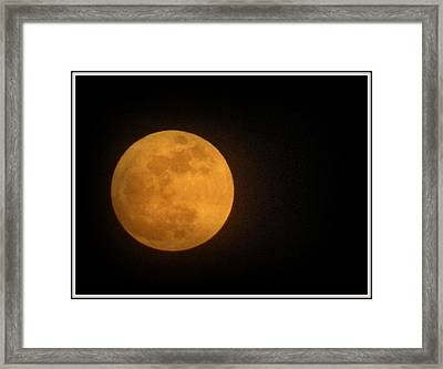Golden Super Moon Framed Print