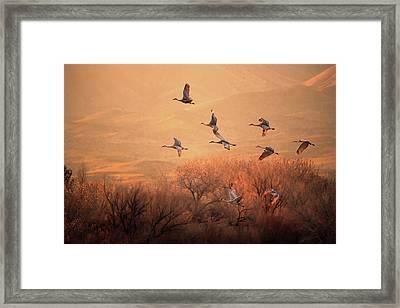 Golden Time Framed Print