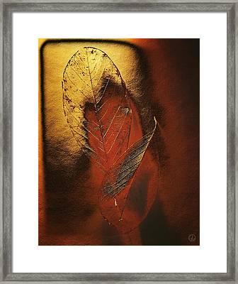 Golden Touch Of Autumn Framed Print by Gun Legler