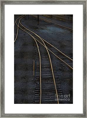 Golden Tracks Framed Print