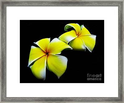 Golden Trumpets Framed Print