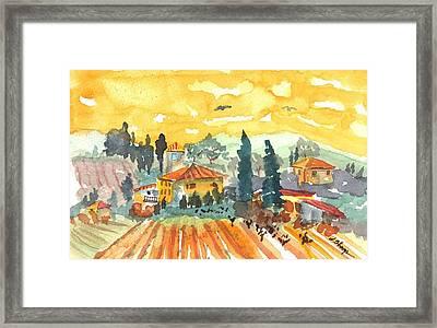 Golden Vineyard  Framed Print