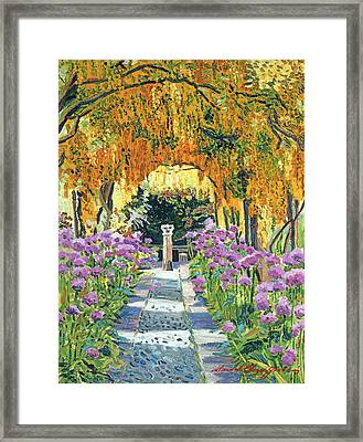 Golden Walk Framed Print