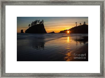 Golden Washington Coast Evening Framed Print by Mike Reid
