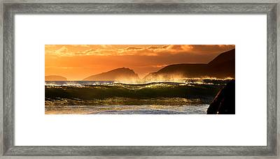 Golden Wave Framed Print by Florian Walsh