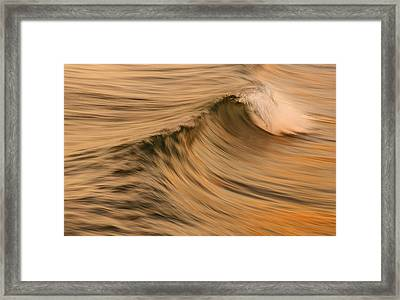 Golden Wave Of Hawaii Framed Print by Tin Lung Chao