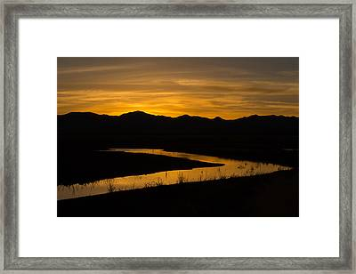 Golden Wetland Sunset Framed Print by Beverly Parks