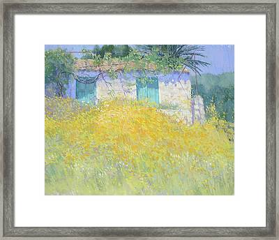 Golden Wildflowers Greece Framed Print by Jackie Simmonds