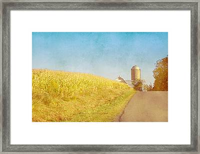 Golden Yellow Cornfield And Barn With Blue Sky Framed Print