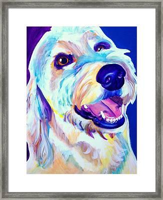 Goldendoodle - Penny Framed Print
