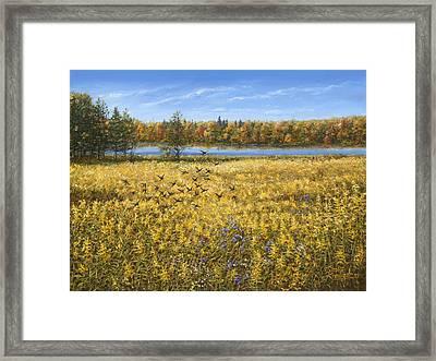 Goldenrod Framed Print by Doug Kreuger