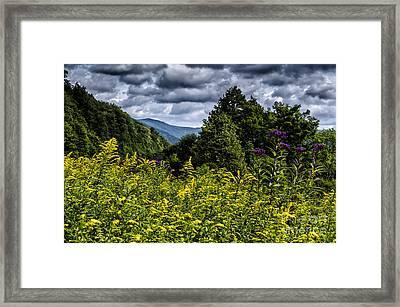 Goldenrod Highland Scenic Highway Framed Print by Thomas R Fletcher