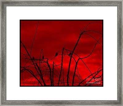 Framed Print featuring the photograph Goldfinch Against Red by Heidi Manly