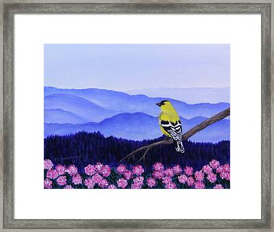 Goldfinch And Rhododendrens Framed Print