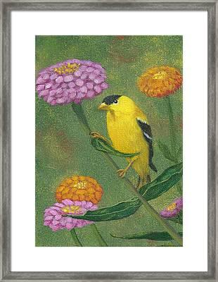 Goldfinch Garden Framed Print