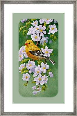 Goldfinch Iphone Case V1 Framed Print by Crista Forest