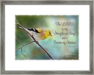Goldfinch With Rosy Shoulder - Digital Paint And Verse Framed Print