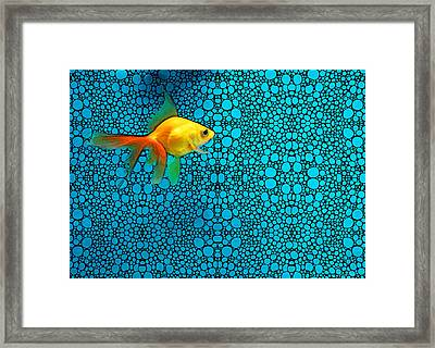 Goldfish Study 3 - Stone Rock'd Art By Sharon Cummings Framed Print