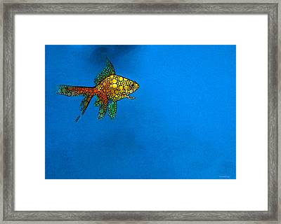 Goldfish Study 4 - Stone Rock'd Art By Sharon Cummings Framed Print by Sharon Cummings