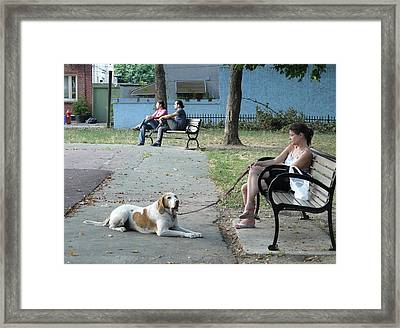 Goldstar Park Framed Print