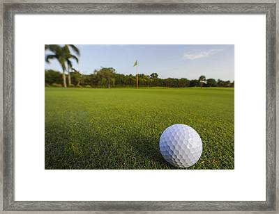 Golf Ball On Golf Course Framed Print by M Cohen