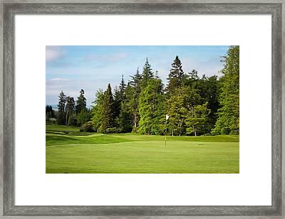 Golf Course Framed Print by Tom Gowanlock