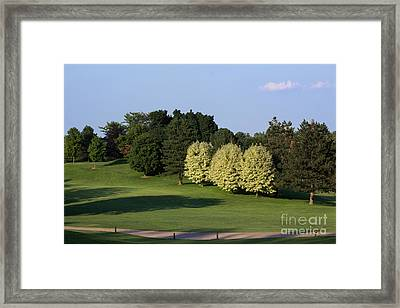 Golf Course View Framed Print