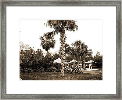 Golf Links, Hotel Royal Poinciana, Palm Beach, Fla, Hotels Framed Print by Litz Collection