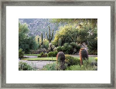 Golf Paradise Framed Print by Fred Larson