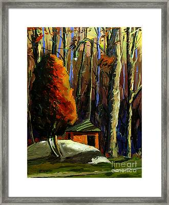 Golf  Shed Series No16 Framed Print