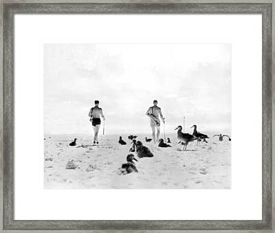 Golf With Gooney Birds Framed Print by Underwood Archives