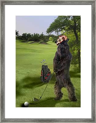 Terrier Golfing Putting Greens Framed Print