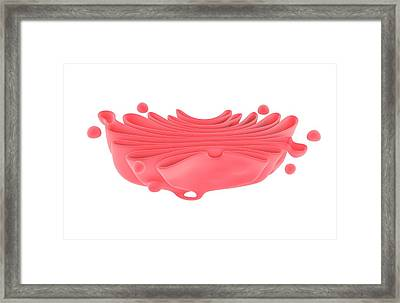 Golgi Apparatus Framed Print by Science Photo Library