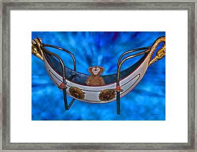 Gondola Bear Framed Print by Thomas Woolworth