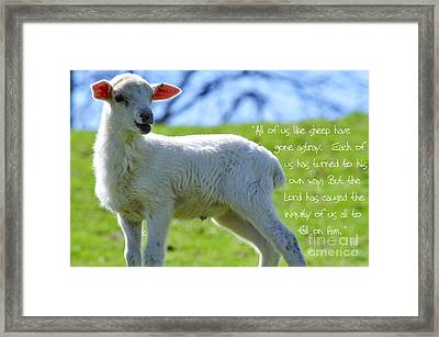 Gone Astray Framed Print by Thomas R Fletcher