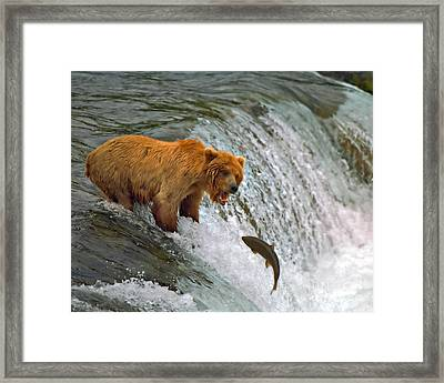 Gone Fishin Framed Print