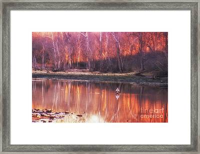 Framed Print featuring the photograph Gone Fishin' by Julie Clements