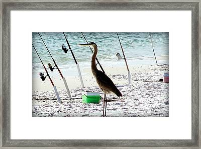 Gone Fishing Framed Print by Debra Forand