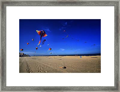 Gone Flyin Framed Print