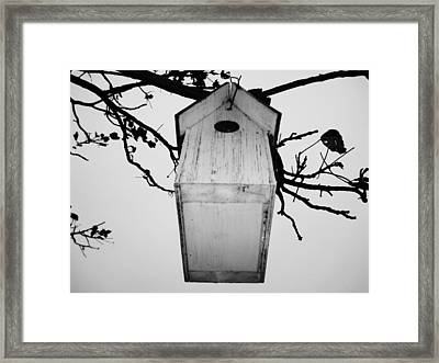 Gone For The Winter Framed Print
