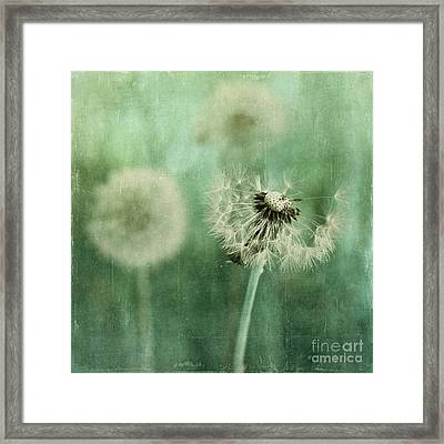 Gone Framed Print by Priska Wettstein