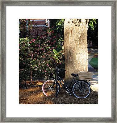 Gone To Class Framed Print