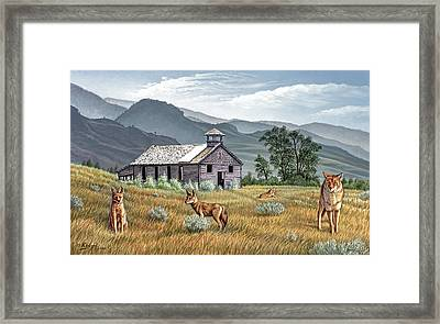 Gone To The Dogs Framed Print by Paul Krapf