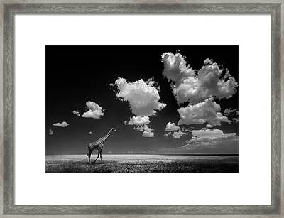 Gone With The Clouds Framed Print