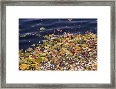 Gone With The Water Framed Print by Alexander Senin