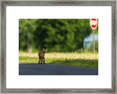 Gonna Miss You Framed Print