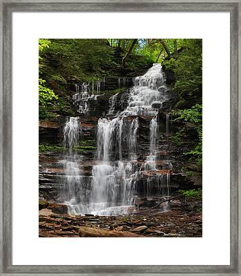 Gonoga Falls Framed Print