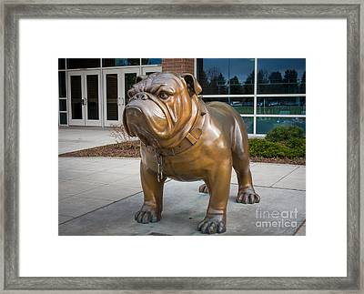 Gonzaga Bulldog Framed Print by Inge Johnsson