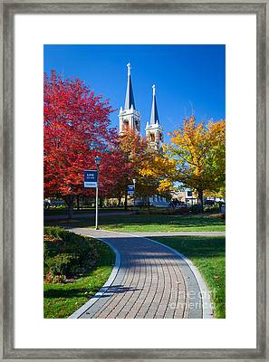 Gonzaga Pathway Framed Print by Inge Johnsson